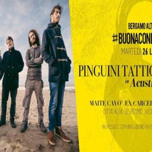Pinguini Tattici Nucleari - Maite Social Club